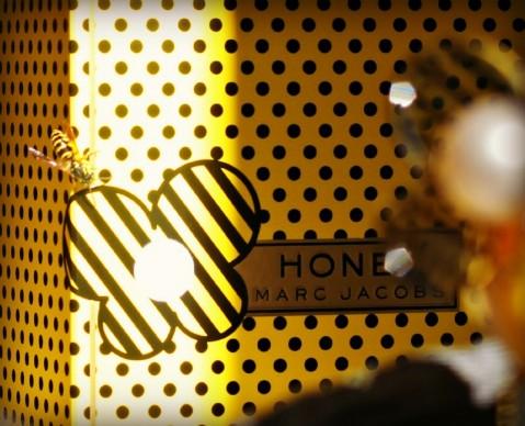 bee on honey