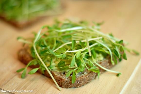 pea sprouts sandwich