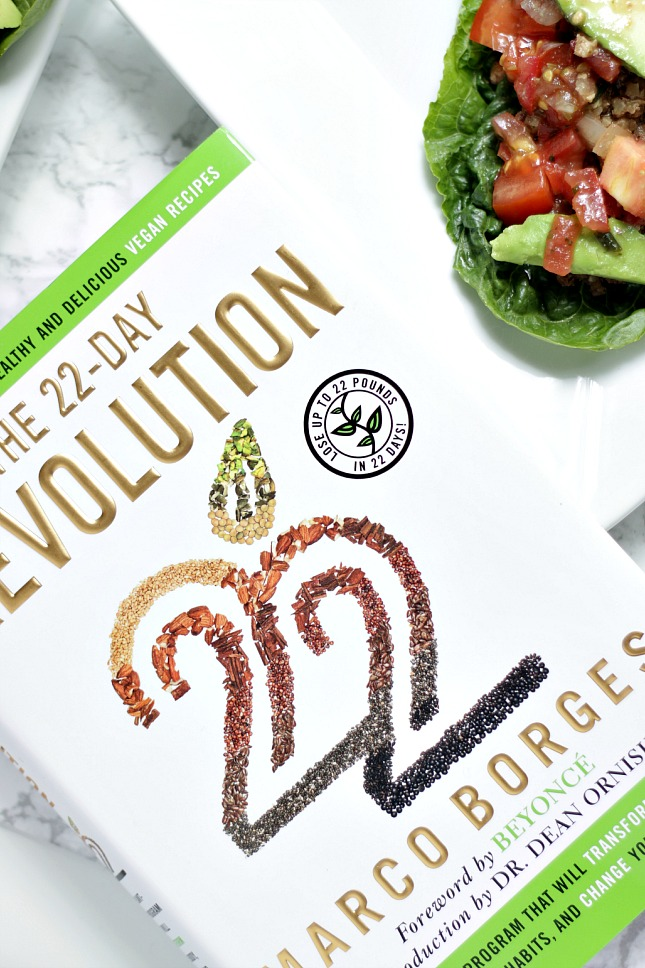 22 day revolution book